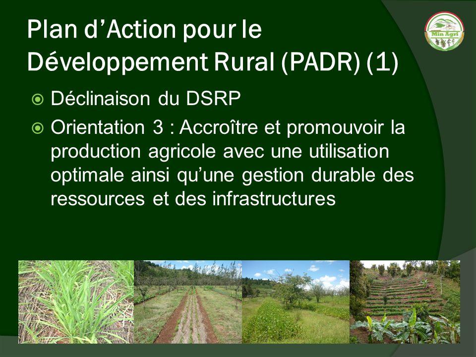 Plan dAction pour le Développement Rural (PADR) (1) Déclinaison du DSRP Orientation 3 : Accroître et promouvoir la production agricole avec une utilis