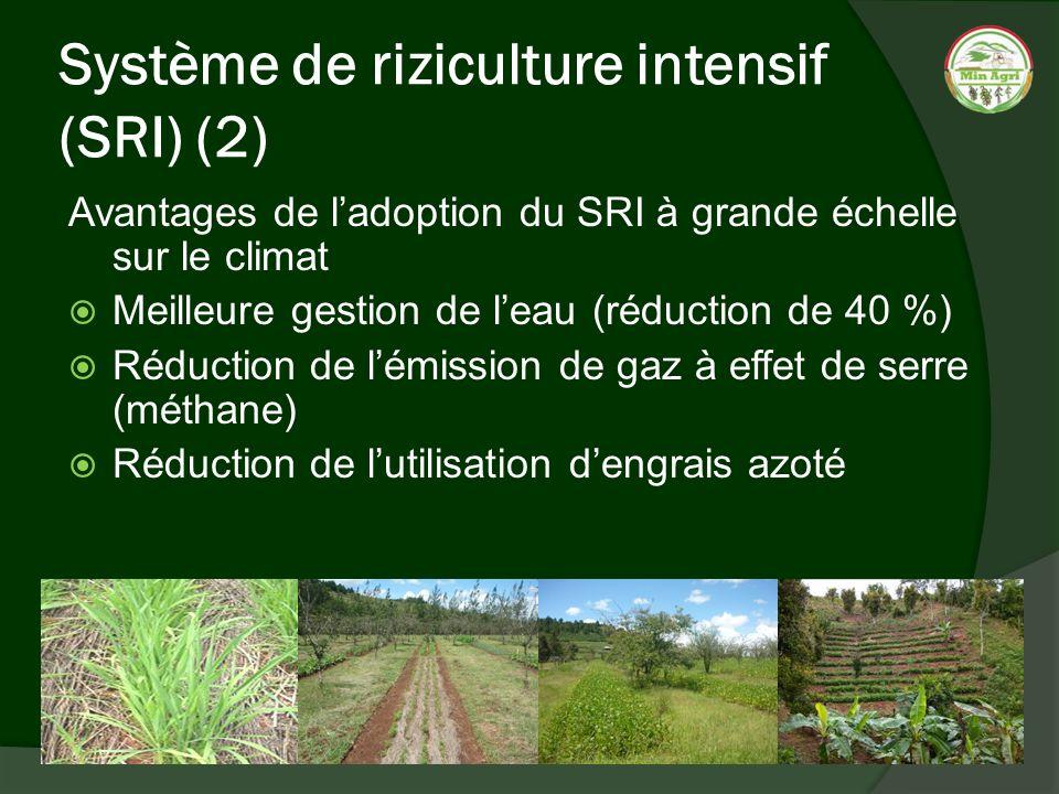 Système de riziculture intensif (SRI) (2) Avantages de ladoption du SRI à grande échelle sur le climat Meilleure gestion de leau (réduction de 40 %) R
