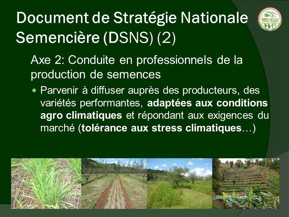 Document de Stratégie Nationale Semencière (DSNS) (2) Axe 2: Conduite en professionnels de la production de semences Parvenir à diffuser auprès des pr