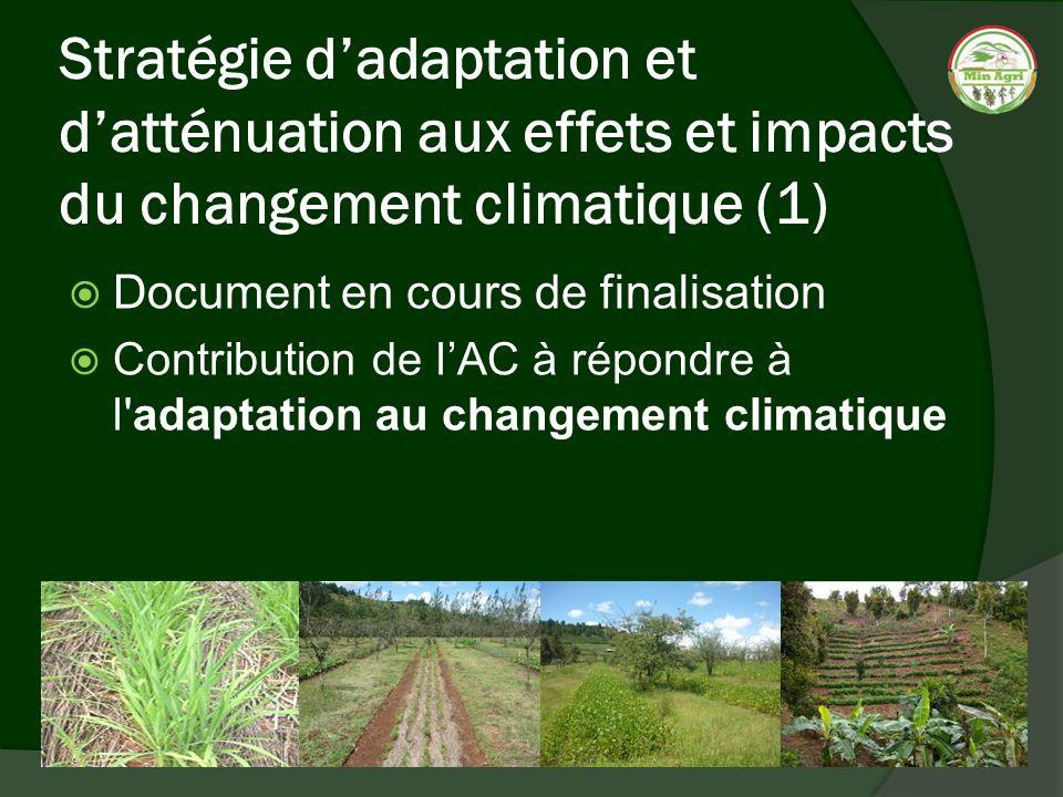 Stratégie dadaptation et datténuation aux effets et impacts du changement climatique (1) Document en cours de finalisation Contribution de lAC à répon