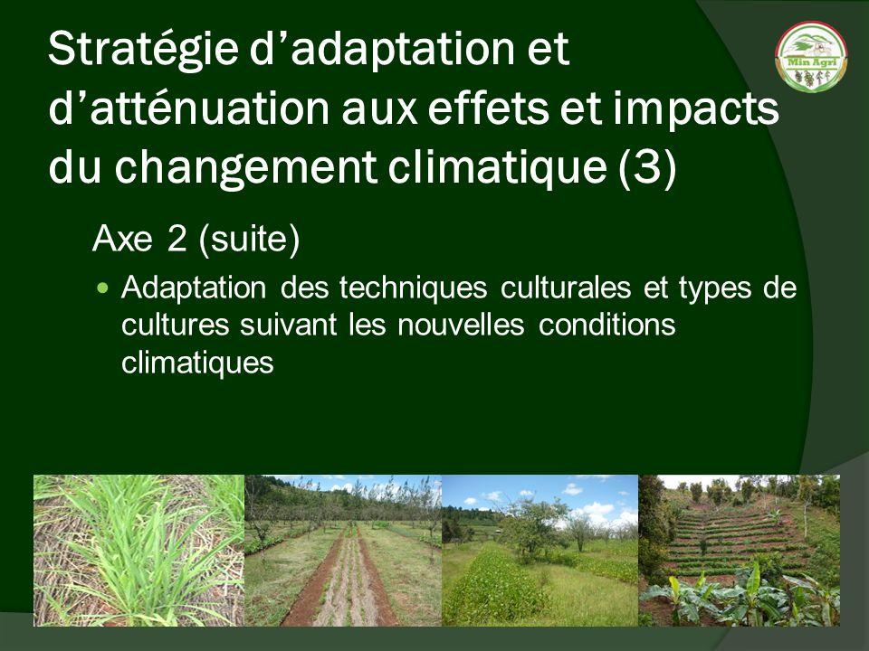 Stratégie dadaptation et datténuation aux effets et impacts du changement climatique (3) Axe 2 (suite) Adaptation des techniques culturales et types d