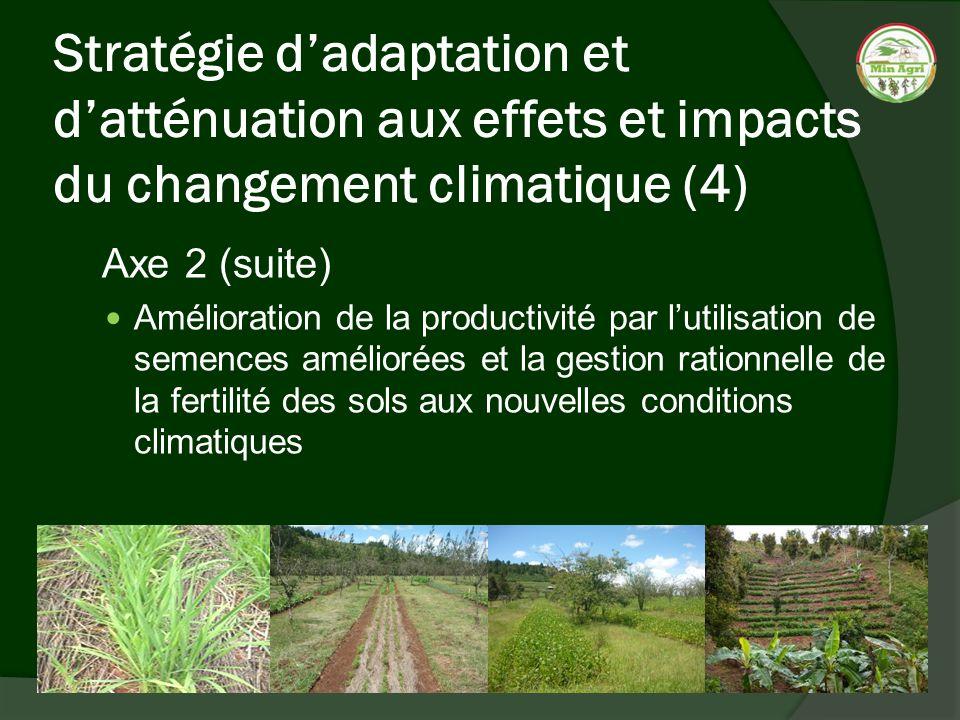 Stratégie dadaptation et datténuation aux effets et impacts du changement climatique (4) Axe 2 (suite) Amélioration de la productivité par lutilisatio