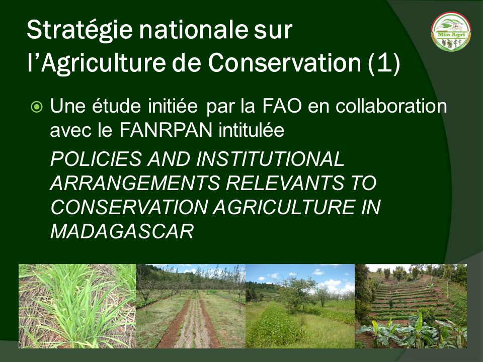 Stratégie nationale sur lAgriculture de Conservation (1) Une étude initiée par la FAO en collaboration avec le FANRPAN intitulée POLICIES AND INSTITUTIONAL ARRANGEMENTS RELEVANTS TO CONSERVATION AGRICULTURE IN MADAGASCAR