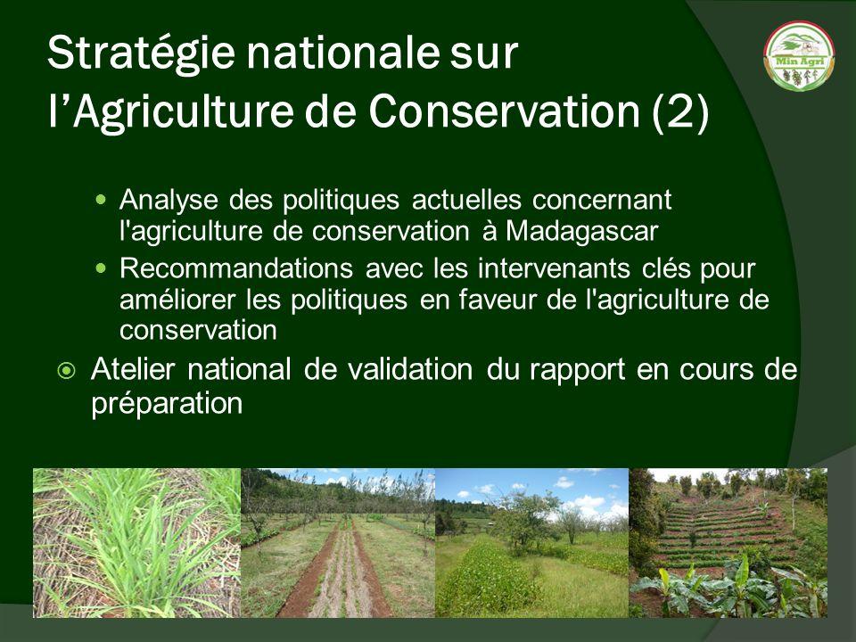 Stratégie nationale sur lAgriculture de Conservation (2) Analyse des politiques actuelles concernant l'agriculture de conservation à Madagascar Recomm
