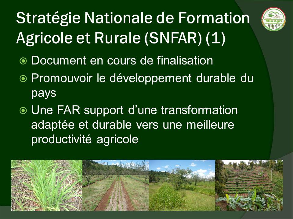 Stratégie Nationale de Formation Agricole et Rurale (SNFAR) (1) Document en cours de finalisation Promouvoir le développement durable du pays Une FAR