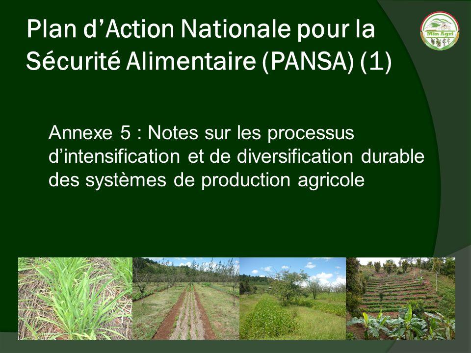 Plan dAction Nationale pour la Sécurité Alimentaire (PANSA) (2) La recherche pour le développement agricole Les types de technologies proposées Révolution verte Approche agro–écologique