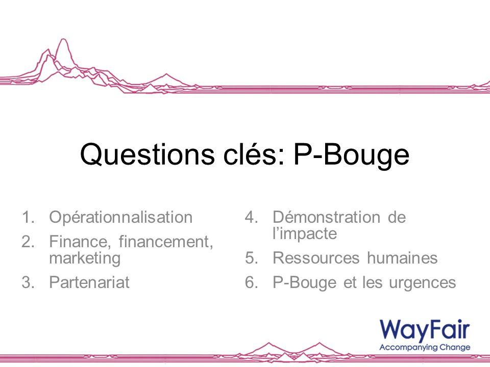 Questions clés: P-Bouge 1.Opérationnalisation 2.Finance, financement, marketing 3.Partenariat 4.Démonstration de limpacte 5.Ressources humaines 6.P-Bo