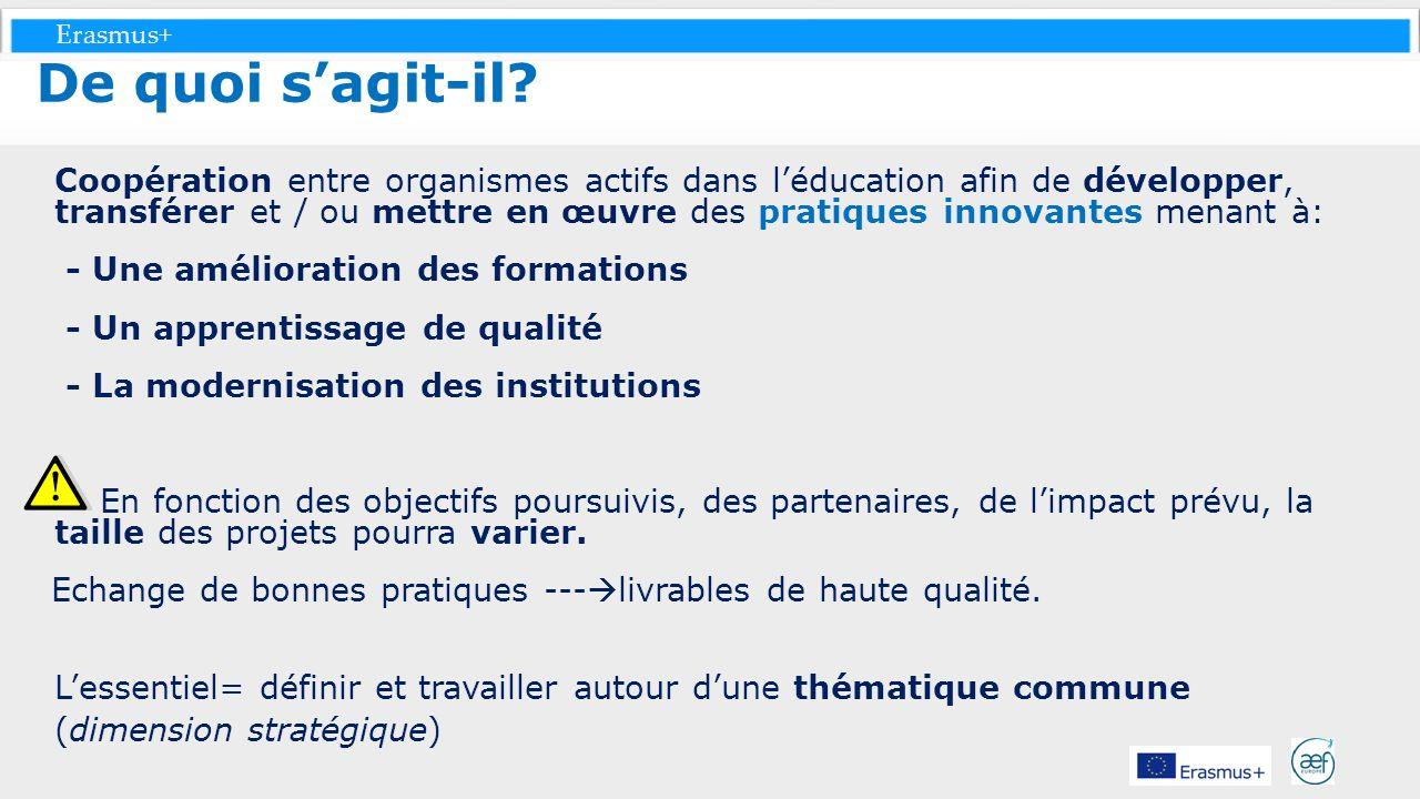 Erasmus+ Coopération entre organismes actifs dans léducation afin de développer, transférer et / ou mettre en œuvre des pratiques innovantes menant à: