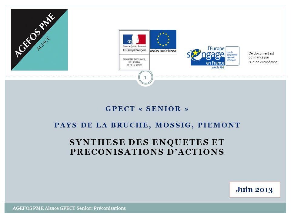 GPECT « SENIOR » PAYS DE LA BRUCHE, MOSSIG, PIEMONT SYNTHESE DES ENQUETES ET PRECONISATIONS DACTIONS Ce document est cofinancé par l'Union européenne