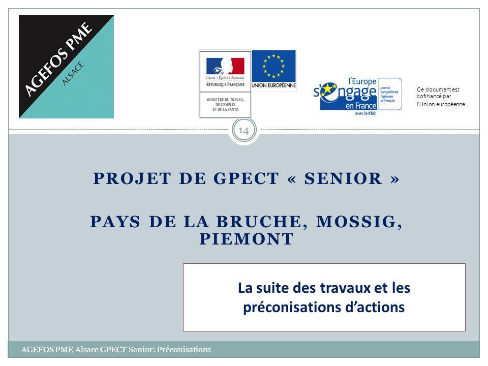 PROJET DE GPECT « SENIOR » PAYS DE LA BRUCHE, MOSSIG, PIEMONT Ce document est cofinancé par l'Union européenne 14 AGEFOS PME Alsace GPECT Senior: Préc