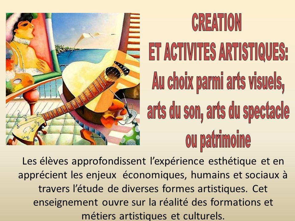 Les élèves approfondissent lexpérience esthétique et en apprécient les enjeux économiques, humains et sociaux à travers létude de diverses formes arti