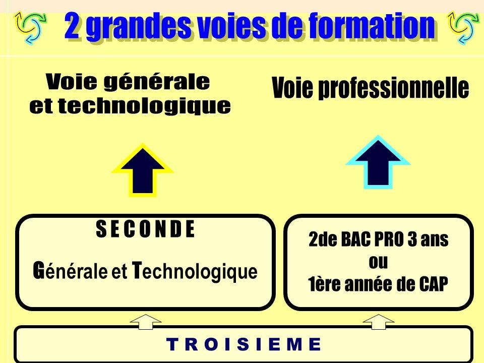 La série sciences et technologies de lindustrie et du développement durable (STI2D) est entrée en application à la rentrée 2011.