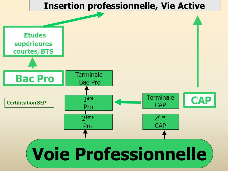 Voie Professionnelle Bac Pro Insertion professionnelle, Vie Active 2 ème Pro Terminale Bac Pro 1 ère Pro Certification BEP Etudes supérieures courtes,