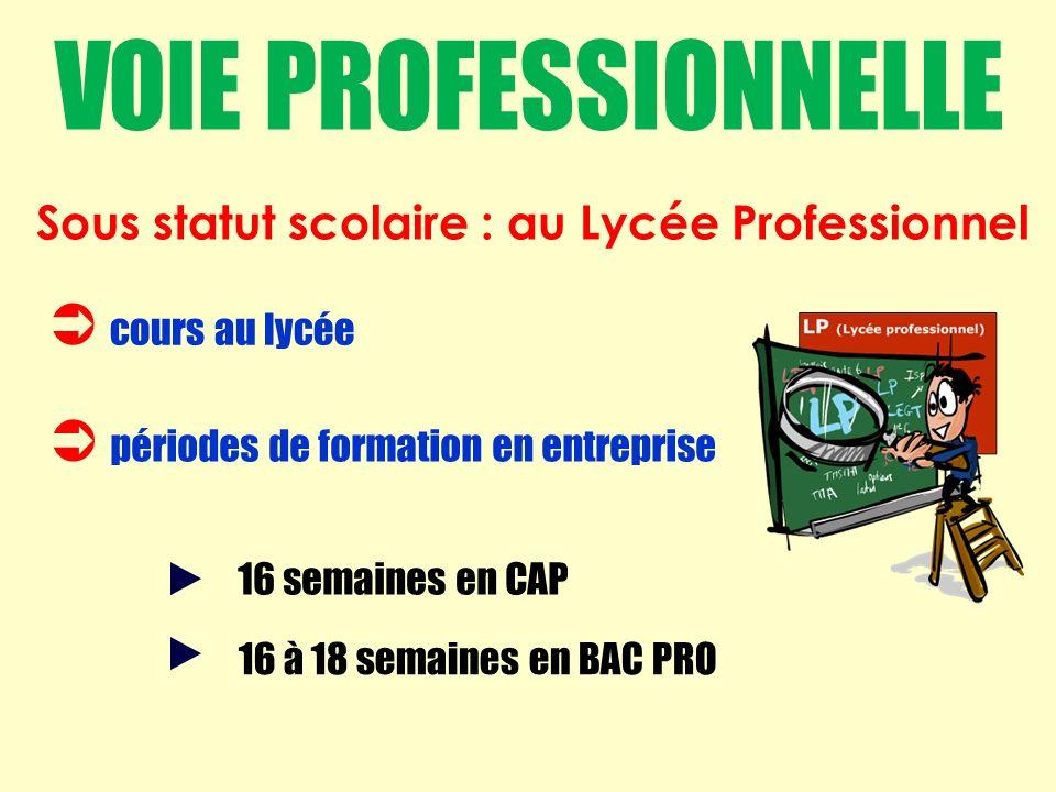 cours au lycée périodes de formation en entreprise 16 semaines en CAP 16 à 18 semaines en BAC PRO Sous statut scolaire : au Lycée Professionnel