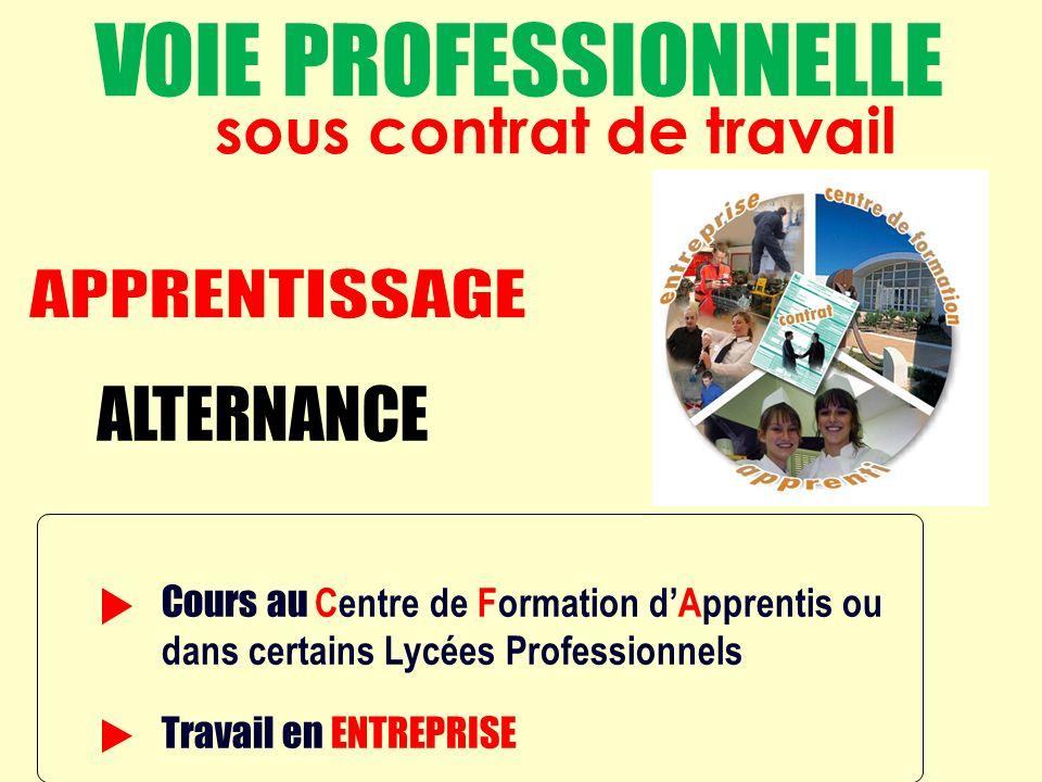 ALTERNANCE = Cours au Centre de Formation dApprentis ou dans certains Lycées Professionnels Travail en ENTREPRISE sous contrat de travail