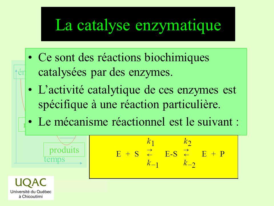 réactifs produits énergie temps Ce sont des réactions biochimiques catalysées par des enzymes. Lactivité catalytique de ces enzymes est spécifique à u