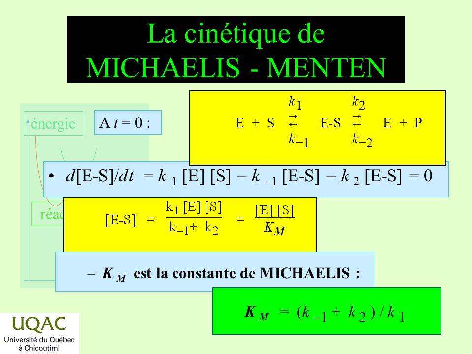 réactifs produits énergie temps La cinétique de MICHAELIS - MENTEN –K M est la constante de MICHAELIS : K M = (k 1 + k 2 ) / k 1 d[E-S]/dt = k 1 [E] [