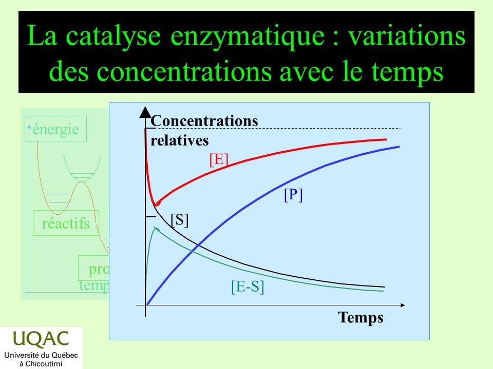 réactifs produits énergie temps La catalyse enzymatique : variations des concentrations avec le temps [S] [E] [P] [E-S] Concentrations relatives Temps