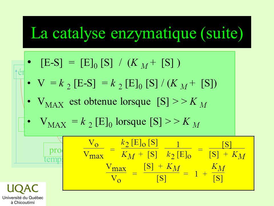 réactifs produits énergie temps La catalyse enzymatique (suite) [E-S] = [E] 0 [S] / (K M + [S] ) V = k 2 [E-S] = k 2 [E] 0 [S] / (K M + [S]) V MAX est