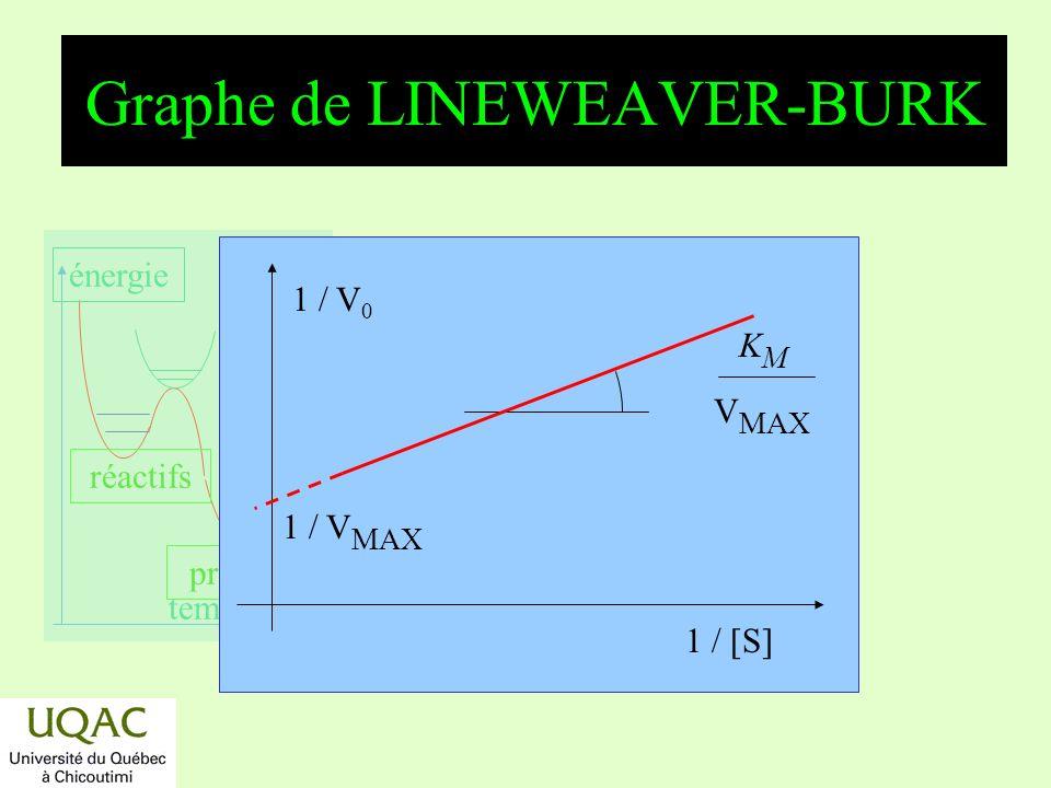 réactifs produits énergie temps Graphe de LINEWEAVER-BURK 1 / [S]1 / V 0 K M V MAX 1 / V MAX