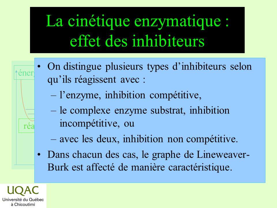 réactifs produits énergie temps La cinétique enzymatique : effet des inhibiteurs On distingue plusieurs types dinhibiteurs selon quils réagissent avec
