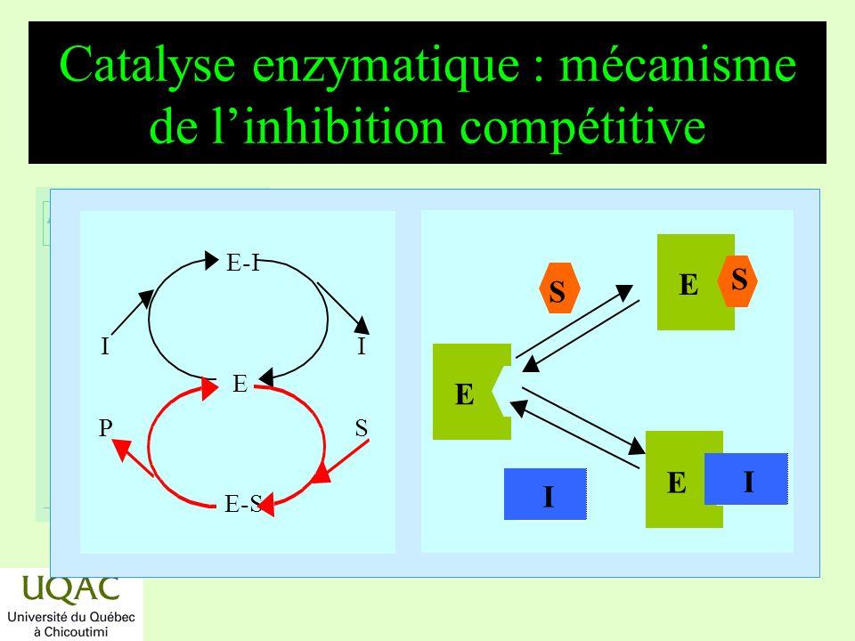 réactifs produits énergie temps Catalyse enzymatique : mécanisme de linhibition compétitive E-I E E-S I P S E E S I E S I