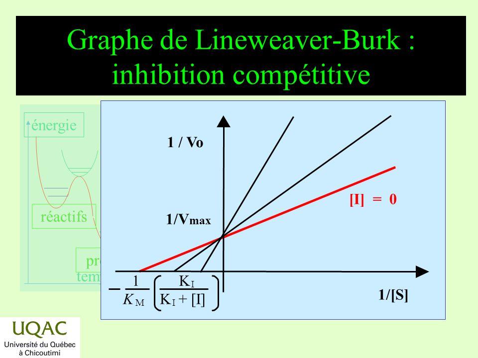 réactifs produits énergie temps Graphe de Lineweaver-Burk : inhibition compétitive [I] = 0 1/V max 1/[S] 1 / Vo 1 K I K M K I + [I]