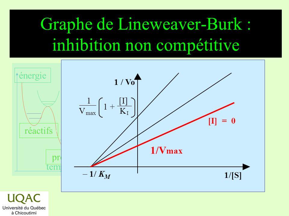réactifs produits énergie temps Graphe de Lineweaver-Burk : inhibition non compétitive 1/[S] 1/ K M 1 / Vo [I] = 0 1/V max 1 [I] V max K I 1 +