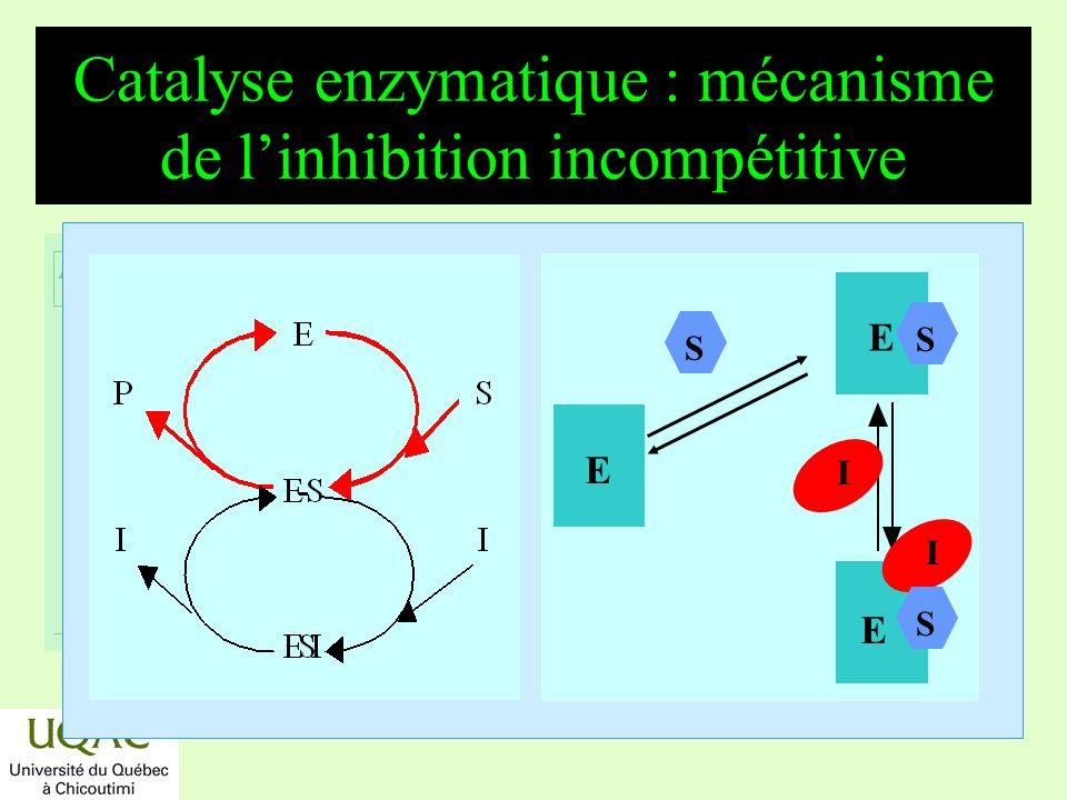 réactifs produits énergie temps Catalyse enzymatique : mécanisme de linhibition incompétitive E S E S E I S I