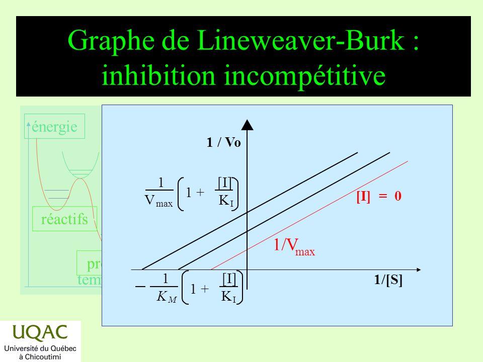 réactifs produits énergie temps Graphe de Lineweaver-Burk : inhibition incompétitive 1[I] V max K I 1 + 1 [I] K M K I 1 + max [I] = 0 1/V 1/[S] 1 / Vo
