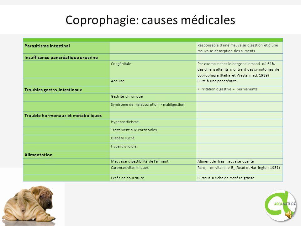 Par définition la coprophagie est lingestion dexcréments par le chiens soit de ses propres excréments soit de ceux dautres chiens soit même ceux dune
