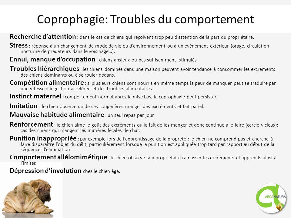 Coprophagie: causes médicales Parasitisme intestinal Responsable dune mauvaise digestion et dune mauvaise absorption des aliments Insuffisance pancréa