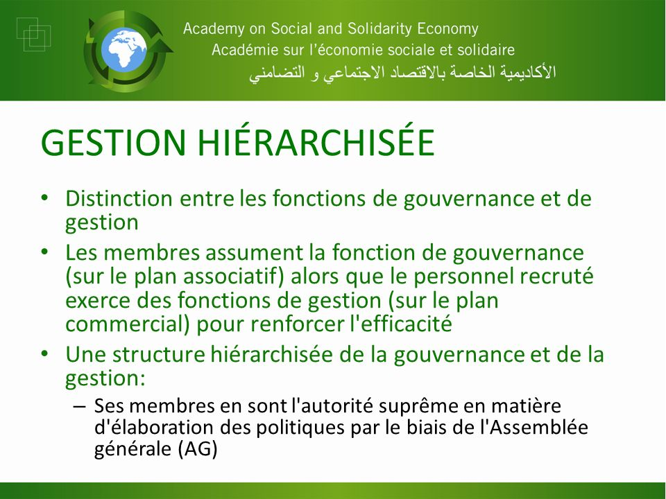 GESTION HIÉRARCHISÉE Distinction entre les fonctions de gouvernance et de gestion Les membres assument la fonction de gouvernance (sur le plan associa