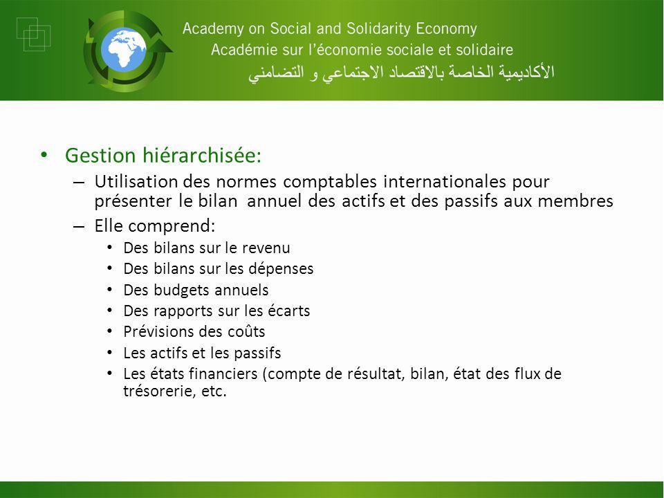 Gestion hiérarchisée: – Utilisation des normes comptables internationales pour présenter le bilan annuel des actifs et des passifs aux membres – Elle