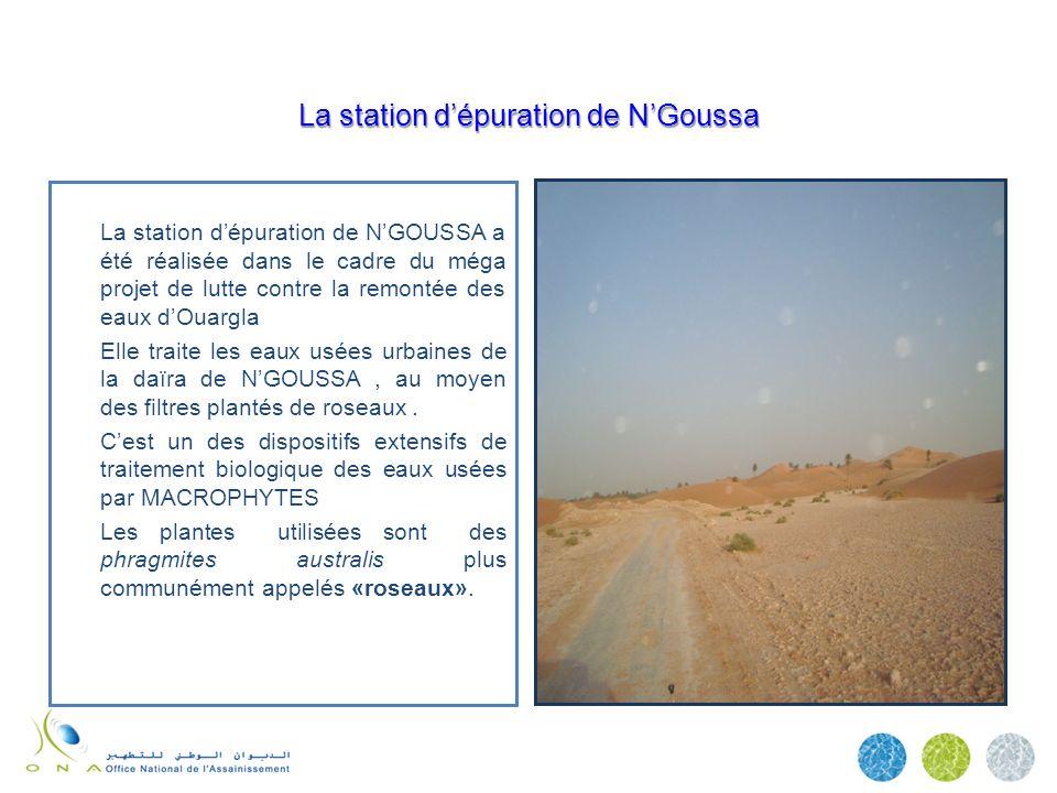 La station dépuration de NGoussa La station dépuration de NGOUSSA a été réalisée dans le cadre du méga projet de lutte contre la remontée des eaux dOu