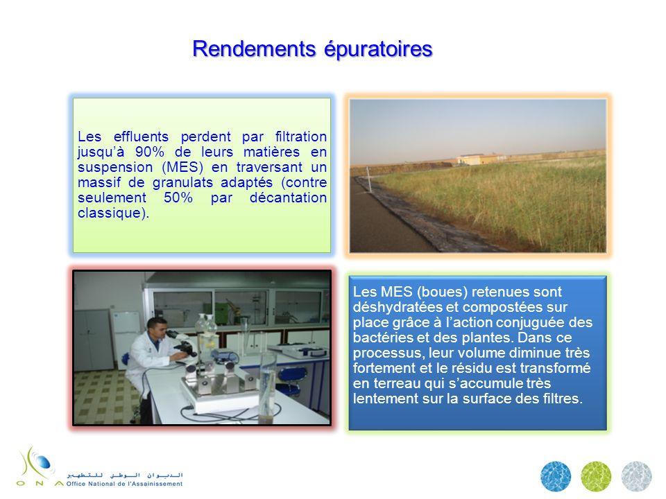 Rendements épuratoires Les effluents perdent par filtration jusquà 90% de leurs matières en suspension (MES) en traversant un massif de granulats adap