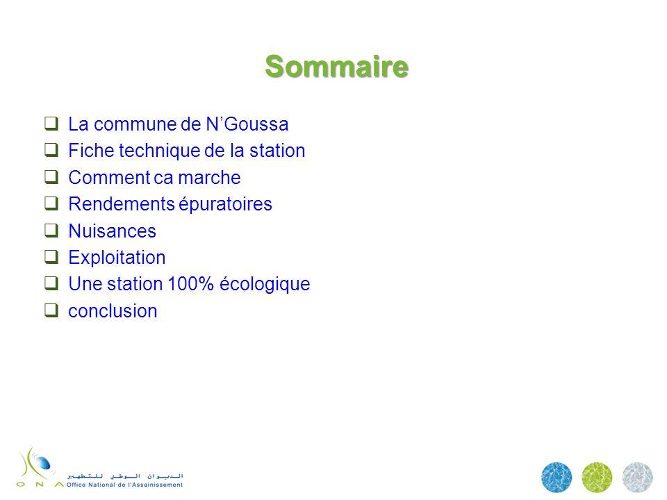Sommaire La commune de NGoussa Fiche technique de la station Comment ca marche Rendements épuratoires Nuisances Exploitation Une station 100% écologiq