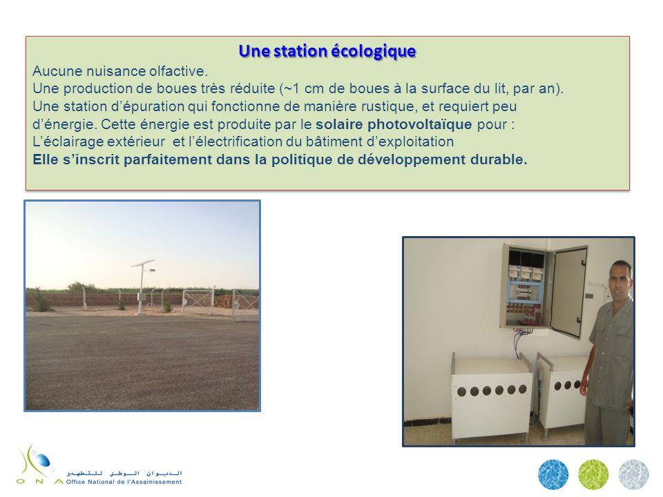 Une station écologique Aucune nuisance olfactive. Une production de boues très réduite (~1 cm de boues à la surface du lit, par an). Une station dépur