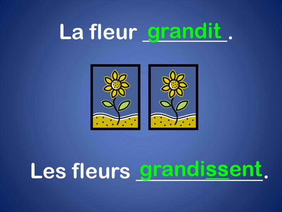 La fleur ________. grandit Les fleurs ____________. grandissent