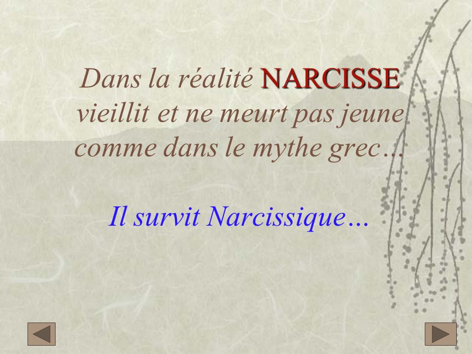 NARCISSE Dans la réalité NARCISSE vieillit et ne meurt pas jeune comme dans le mythe grec… Il survit Narcissique…