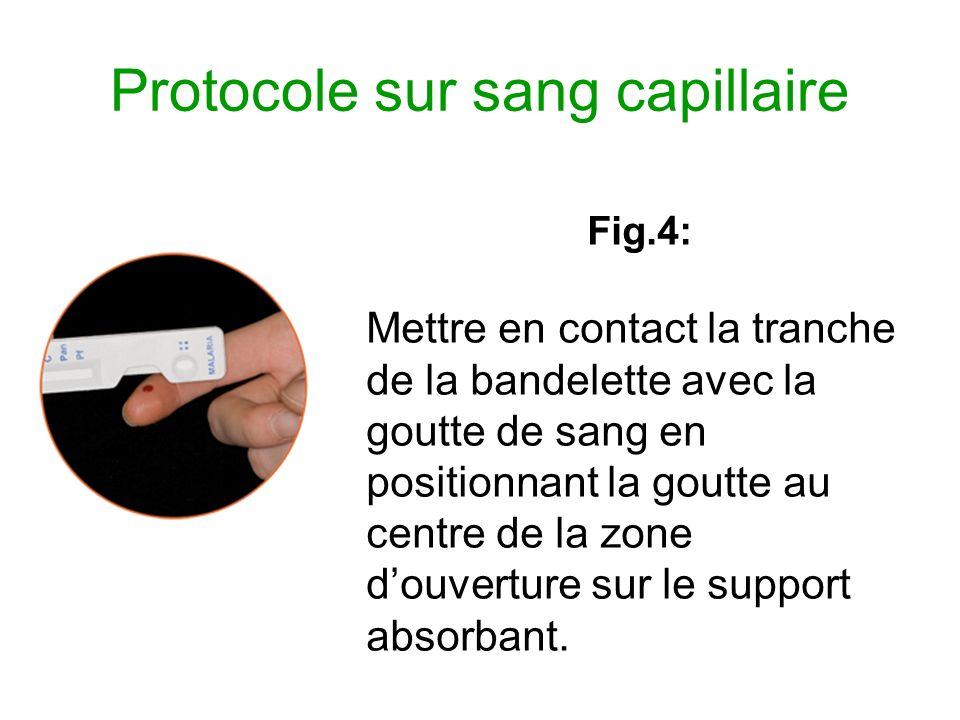 Protocole sur sang capillaire Fig.4: Mettre en contact la tranche de la bandelette avec la goutte de sang en positionnant la goutte au centre de la zo