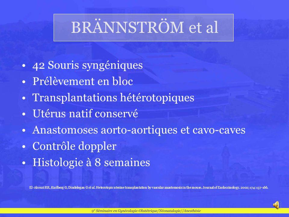 BRÄNNSTRÖM et al 42 Souris syngéniques Prélèvement en bloc Transplantations hétérotopiques Utérus natif conservé Anastomoses aorto-aortiques et cavo-c