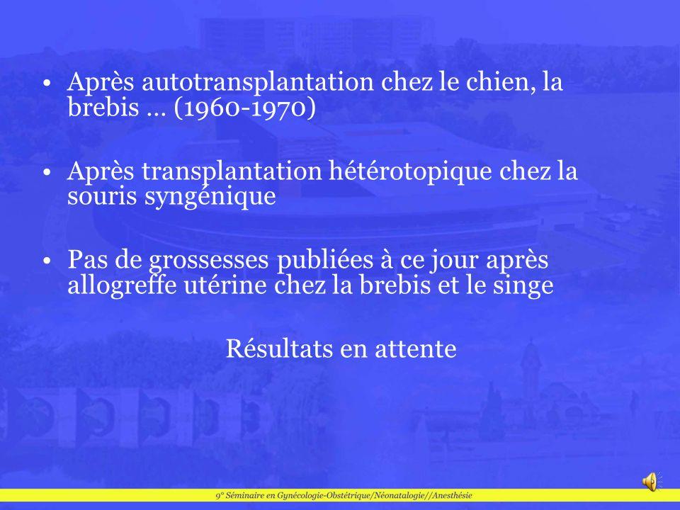 Après autotransplantation chez le chien, la brebis … (1960-1970) Après transplantation hétérotopique chez la souris syngénique Pas de grossesses publi
