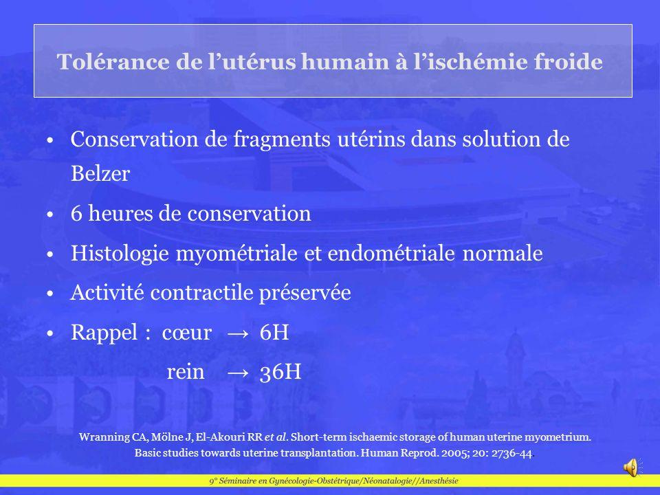 Tolérance de lutérus humain à lischémie froide Conservation de fragments utérins dans solution de Belzer 6 heures de conservation Histologie myométria