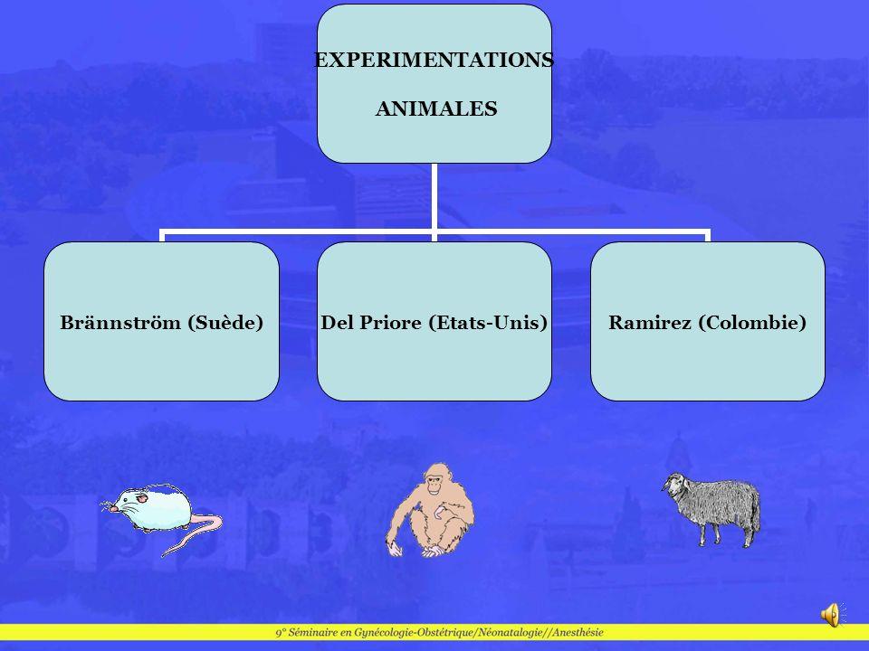 EXPERIMENTATIONS ANIMALES Brännström (Suède) Del Priore (Etats- Unis) Ramirez (Colombie)