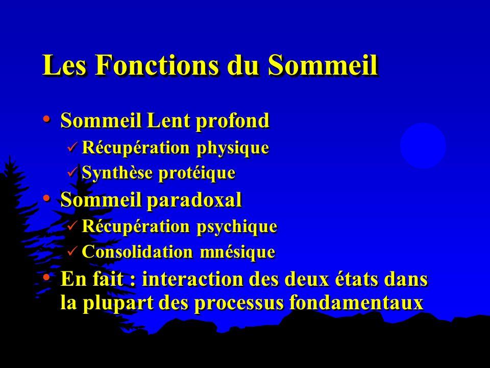 Les Fonctions du Sommeil Sommeil Lent profond Récupération physique Synthèse protéique Sommeil paradoxal Récupération psychique Consolidation mnésique
