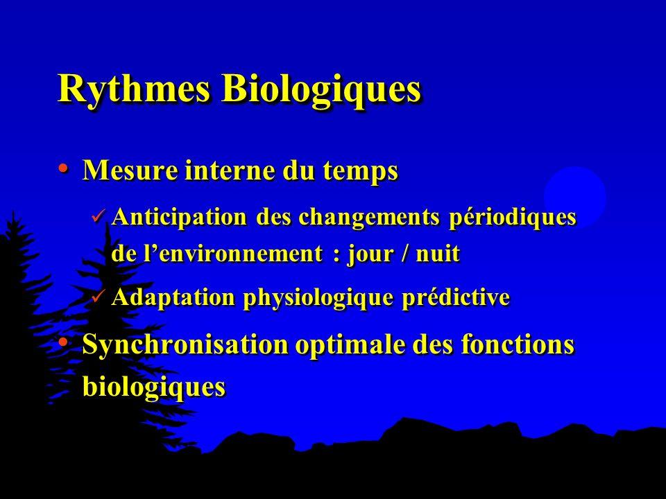 Rythmes Biologiques Mesure interne du temps Anticipation des changements périodiques de lenvironnement : jour / nuit Adaptation physiologique prédicti