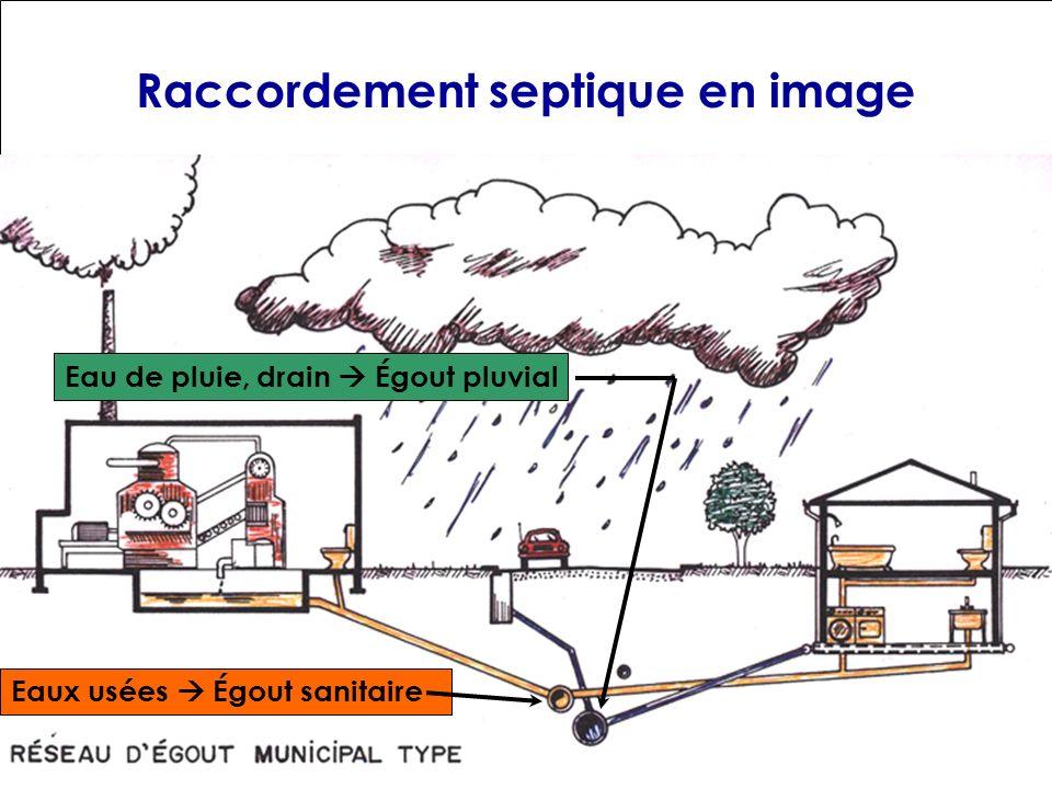 Raccordement septique en image Eaux usées Égout sanitaire Eau de pluie, drain Égout pluvial