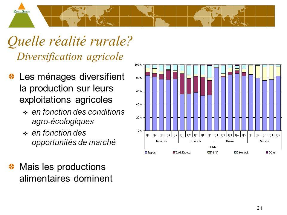 24 Les ménages diversifient la production sur leurs exploitations agricoles en fonction des conditions agro-écologiques en fonction des opportunités de marché Mais les productions alimentaires dominent Quelle réalité rurale.