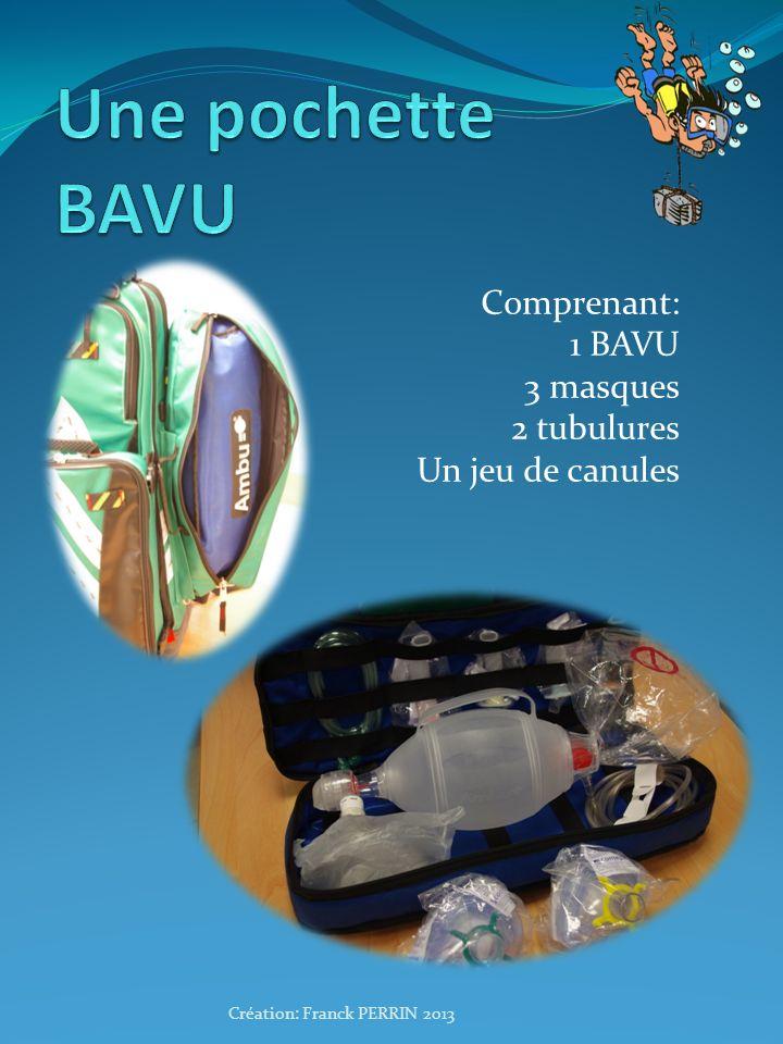 Comprenant: 1 BAVU 3 masques 2 tubulures Un jeu de canules Création: Franck PERRIN 2013